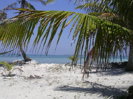 Ocean Front Lots, Bay Islands, Honduras