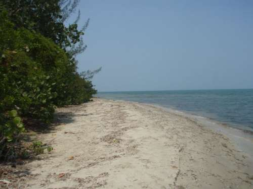 877_beachphotocopy