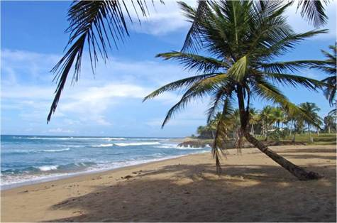Beachfront Lot for Sale, Dominican Republic