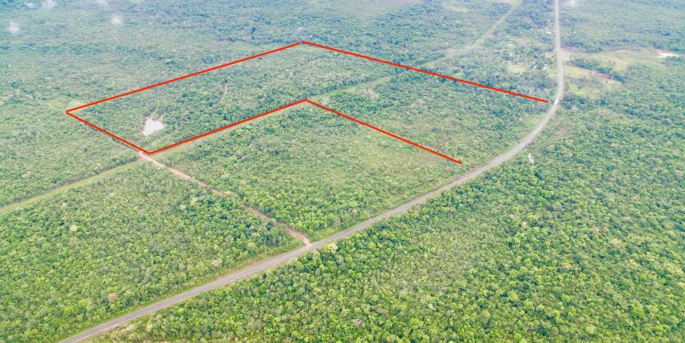 F010 - 114 Acres at Medina Bank - Toldedo - outlined
