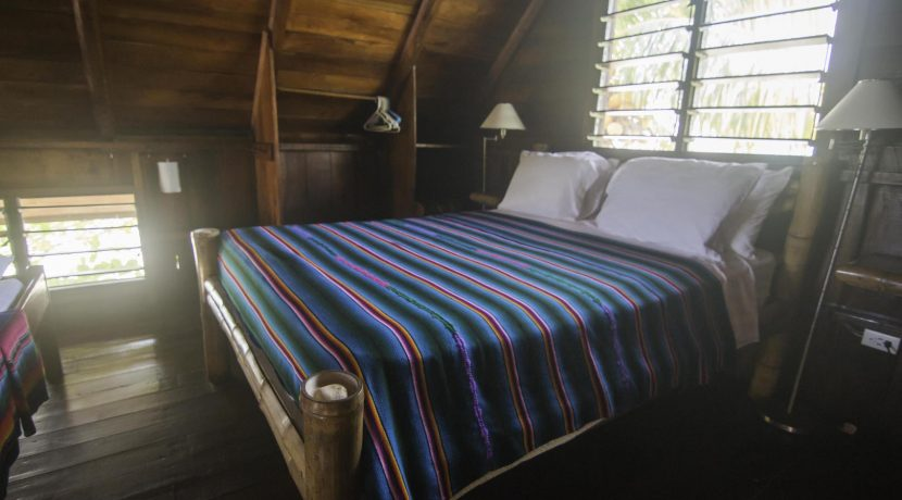 R125 - Green Parrot - Beach house - loft bed