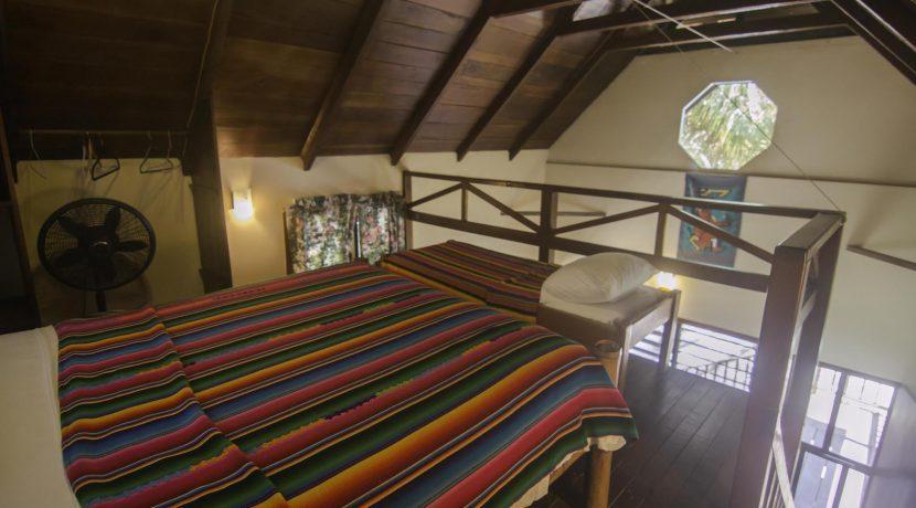 R125 - Green Parrot - Loft - beach house