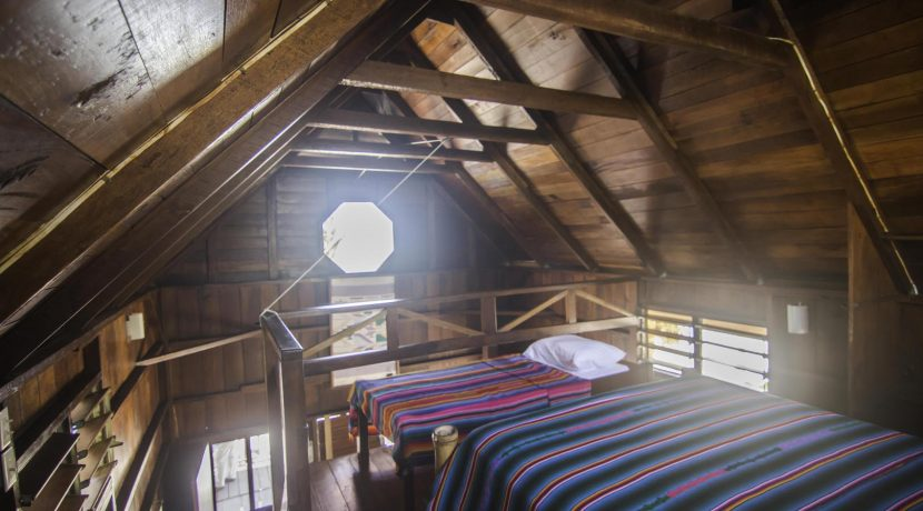 R125 - Green Parrot - beach house loft