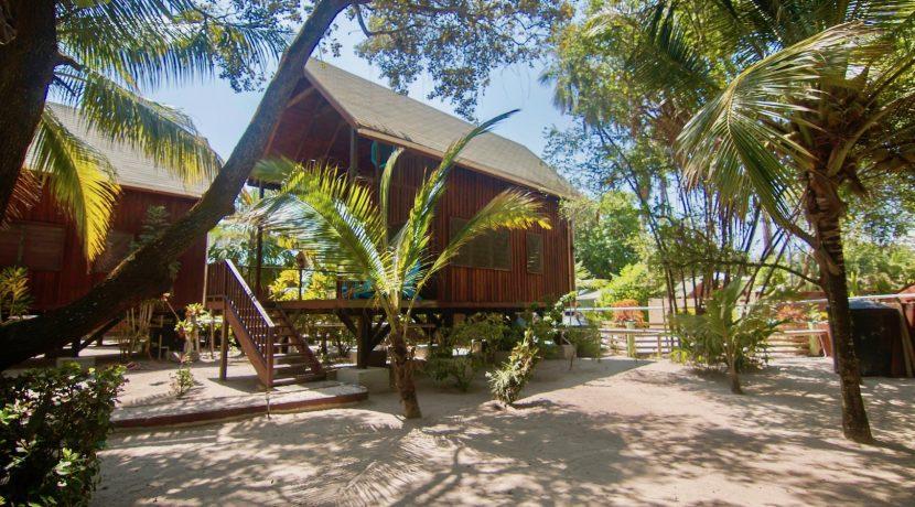 R125 - Green Parrot - beach house rentals
