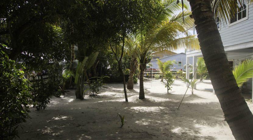 Y249 - Placencia Village Commerical property.jpg - back yard