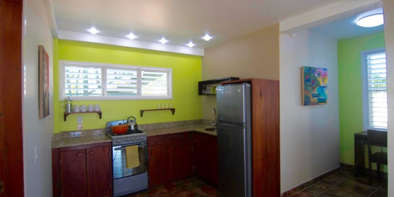 Y254 - tiki unit - kitchen