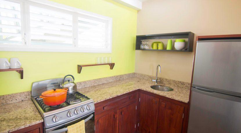 Y254 - tiki - unit kitchen