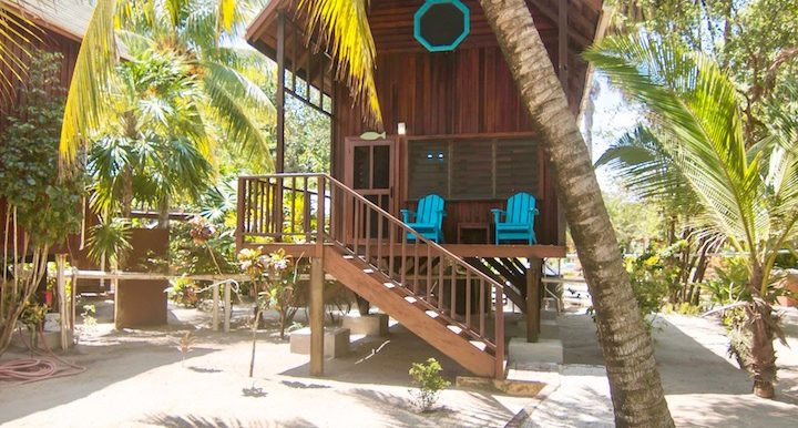 R125 - Green Parrot - Beach - house