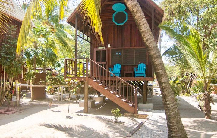 R125 - Green Parrot - Beach - house