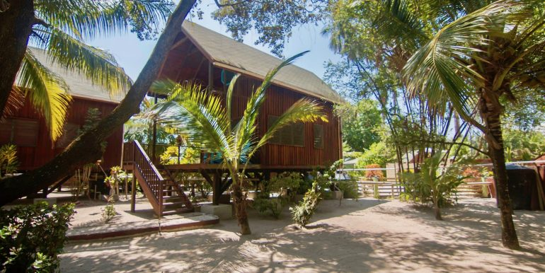 R125 - Green Parrot - beach house rentals