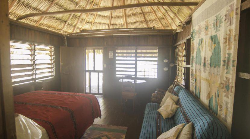 R125 - Green Parrot - cabana interior